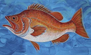 Deepwater Red Fish acrylic painting